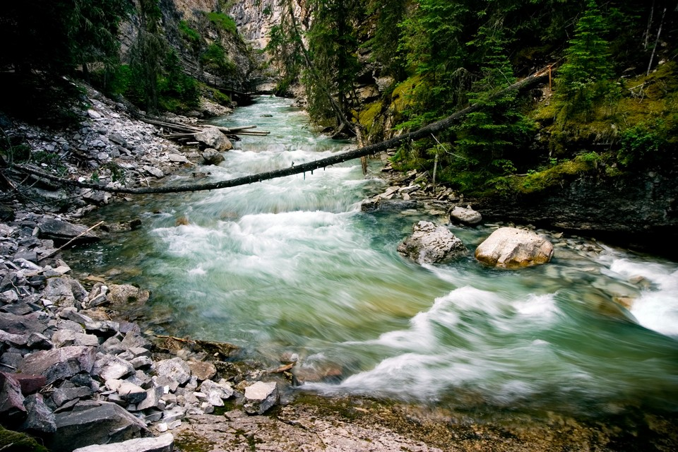 The Rapids of Johnston Canyon