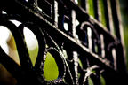 Wrought Iron Intricate